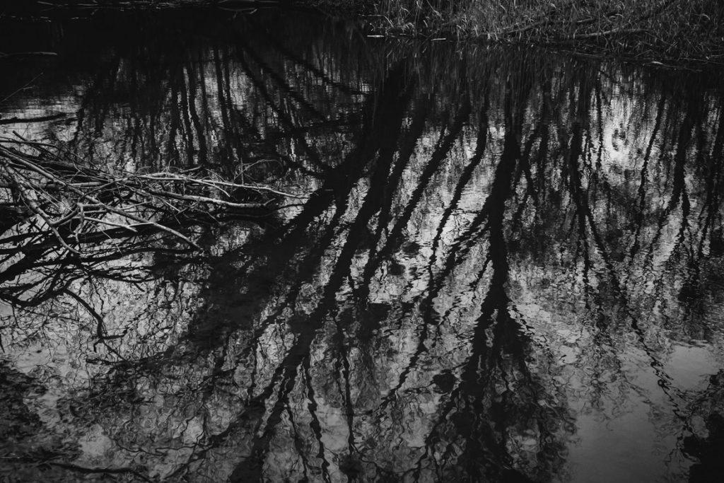 DONAUAUEN_ORTH_by_Manolo_Ponte